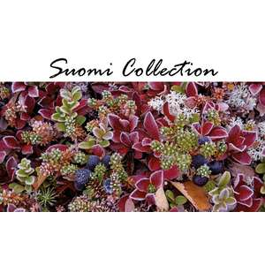 Suomi Collection panoraama